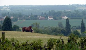 Across the Stour Valley